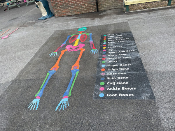 DBD-Play-Skeleton-Playground-Marking